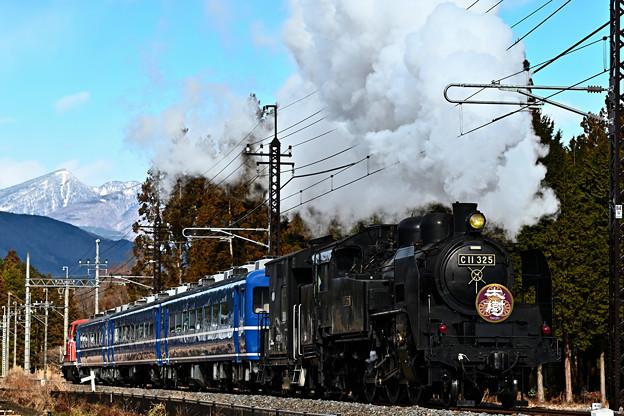 Photos: C11 325SL大樹4号倉ケ崎SL花畑