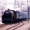 Photos: C62ニセコ号小樽入線