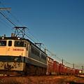 Photos: EF65 2097[新]鹿島貨物1092レ