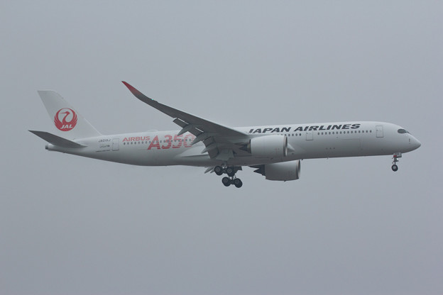 JAL A350 TEST FLIGHT!! その壱