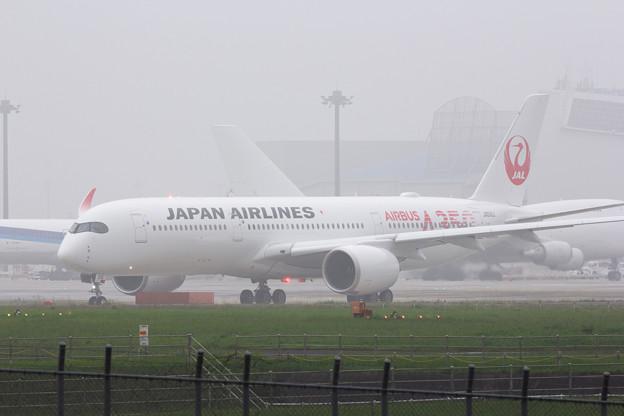 JAL A350 TEST FLIGHT!! その参