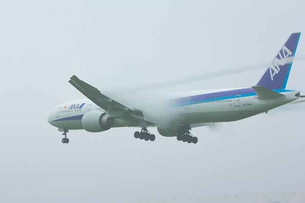 ANA 777-300ER LANDING TO NARITA