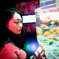 写真: Staring with goldfish