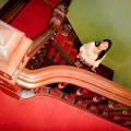 写真: Spiral Staircase