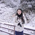 写真: 垂リ雪