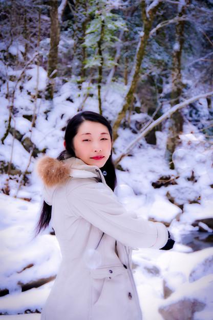 写真: 霜花
