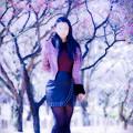 写真: 木霊呼ブ