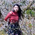 写真: 風待草