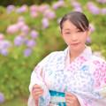 紫陽花ノ華
