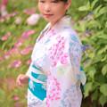 Photos: 紫陽花ノ詩