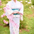 Photos: 紫陽花散歩