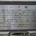 写真: R0013767