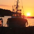 写真: 夕日を浴びて