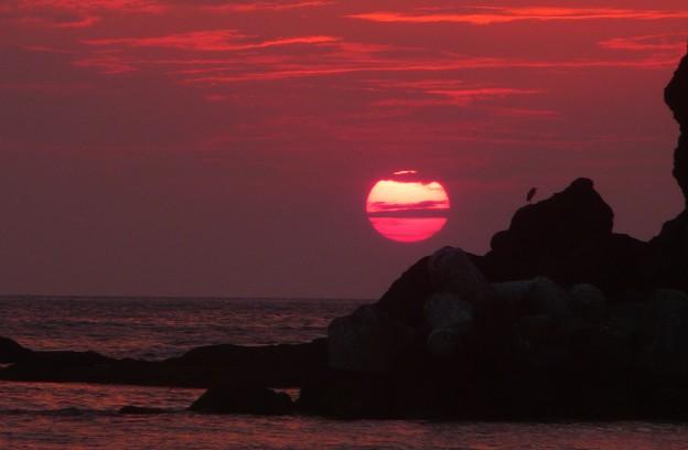写真: 海寂しげに
