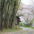 Photos: レトロな道