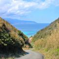 Photos: 碧い海へ