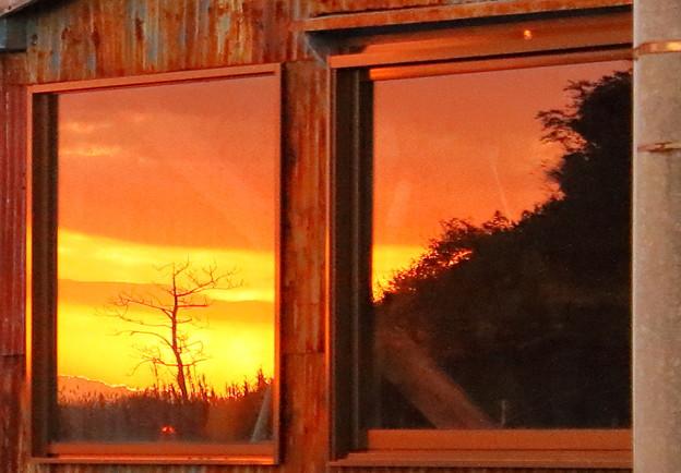Photos: 窓辺の風景