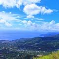 Photos: 駿河湾を望む