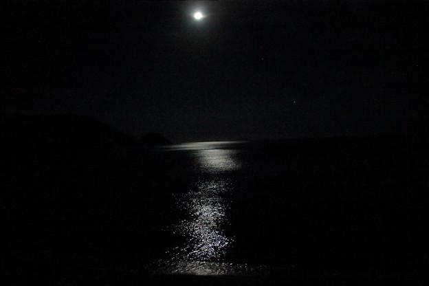 Photos: 月明り