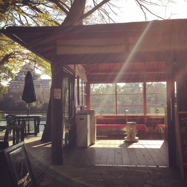 木漏れ日と岡山城