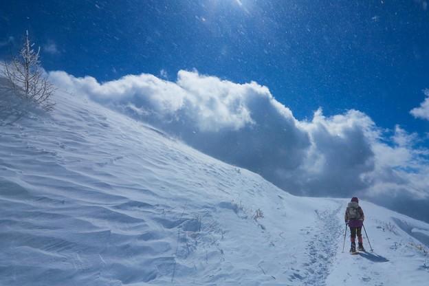 写真: 山頂へ