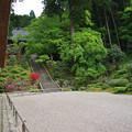 Photos: 枯山水(本堂側)