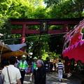 Photos: 根津神社の次は・・・