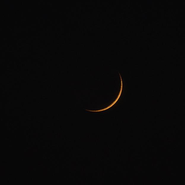 写真: お月様のアップ
