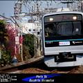 写真: 四季の鉄道・春