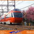 Photos: 四季の鉄道・春