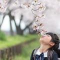 Photos: 君と