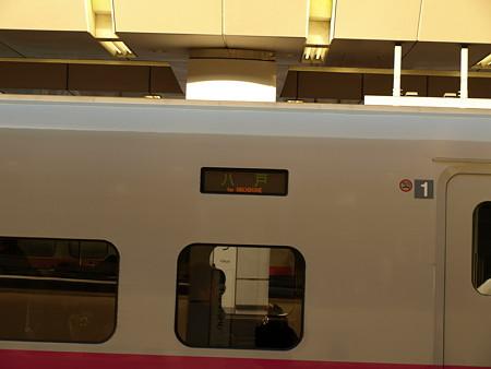 E2系(東京駅)