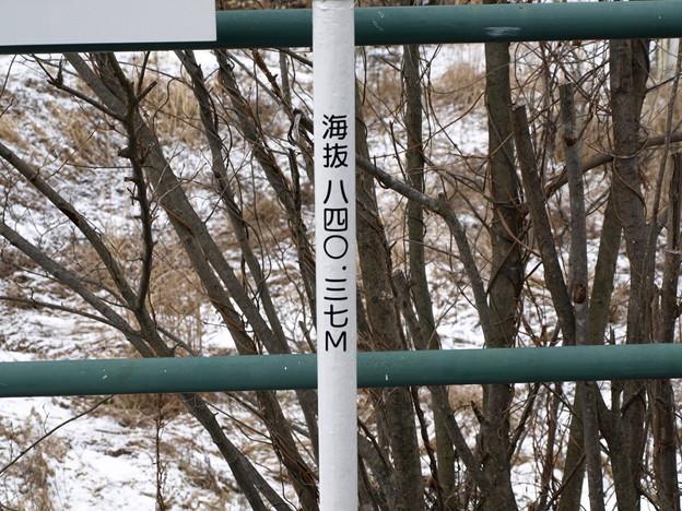写真: 大前駅