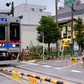 写真: 京成電鉄 金町線 踏切