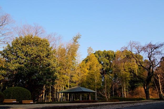 戸定が丘歴史公園