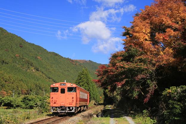 Photos: 青空と