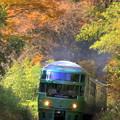 ゆふいんの森号秋を往く