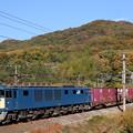 Photos: 貨物の秋
