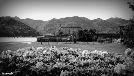 公園146