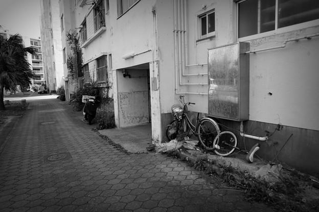 写真: 高島#4