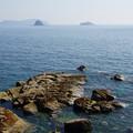 写真: 高島#34
