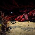 第138回モノコン~赤い網やわらかな影~