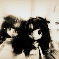 Photos: 第146回モノコン~sisters~