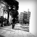 Photos: R1176853