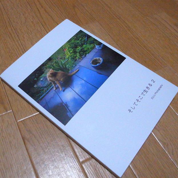 Photos: そっと7冊目ww
