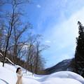 Photos: 青と白