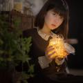 Photos: 夜長