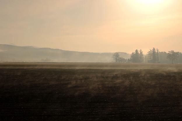 晩秋の朝霧