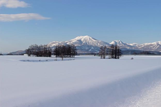 雪原とニセコ連峰
