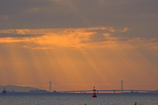 Photos: 大阪湾の夕暮れ
